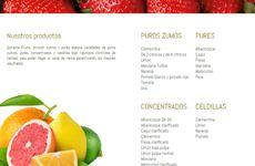 Paginas web baratas de Empresas Varias como FRUTAS